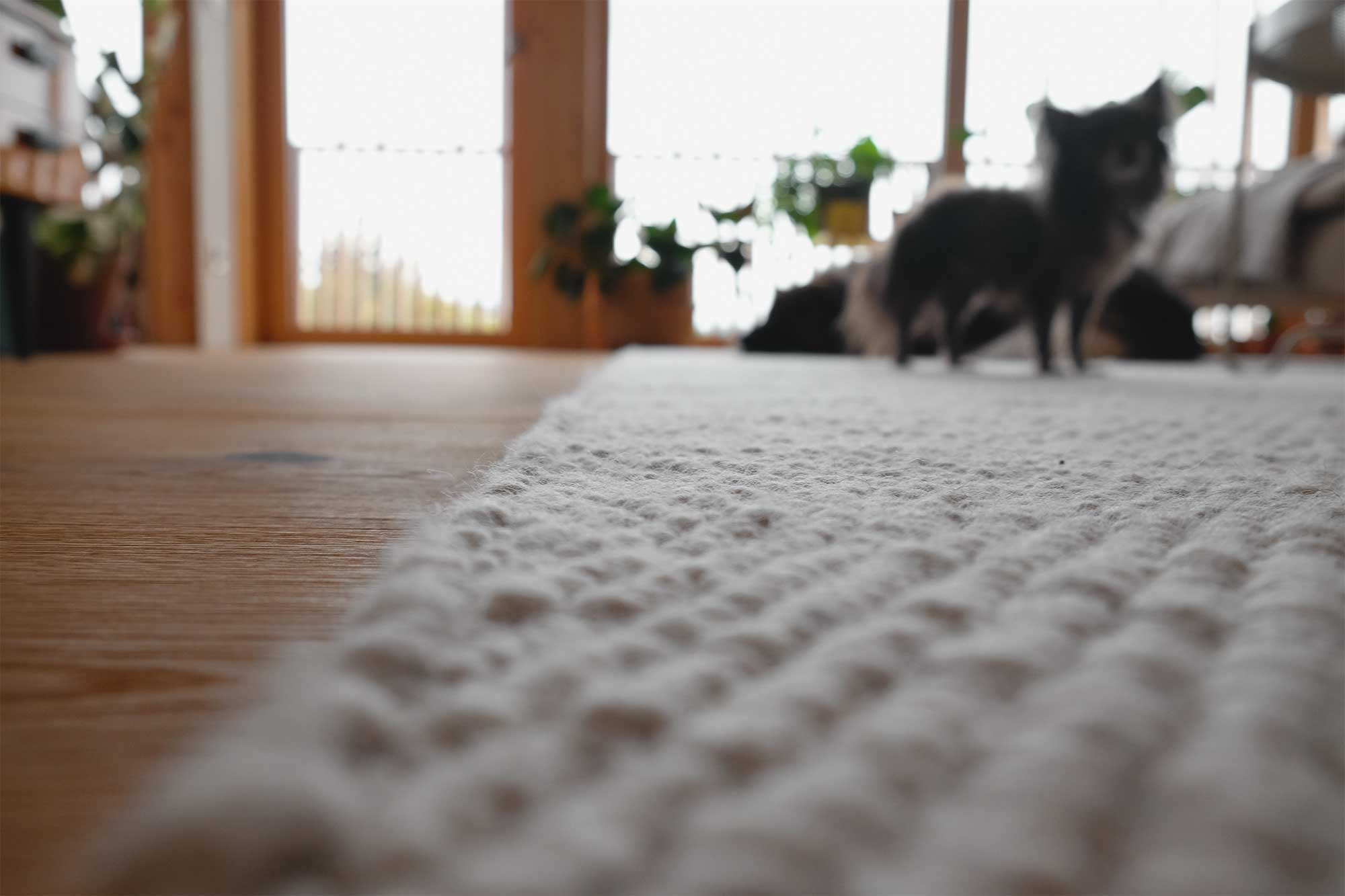 Luftfeuchteregulation durch die Schafschurwolle