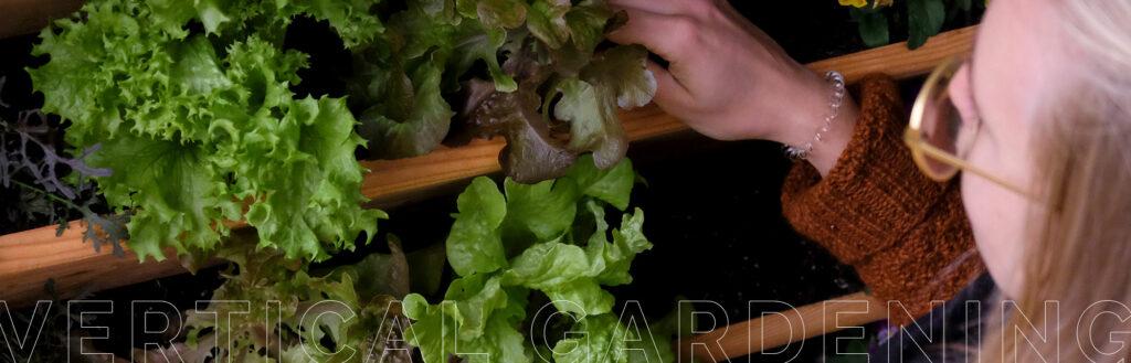 Vertikales Gärtnern mit dem Vertikalbeet von Herbios.
